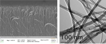 Vertically aligned carbon nanotubes carpets over large surfaces