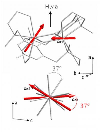 Magnétisme moléculaire : sonder l'anisotropie locale avec des neutrons polarisés