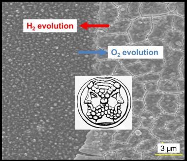 De l\'hydrogène par électrolyse de l'\'eau sans platine : deux réactions, un seul catalyseur à base de cobalt