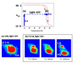 Molecular magnetism and photomagnetism