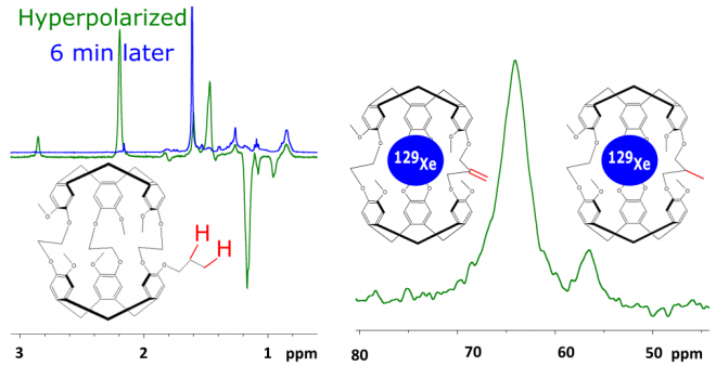 Hyperpolarized species for NMR/MRI : parahydrogen