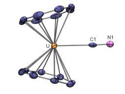 Complexes cyanure des éléments f