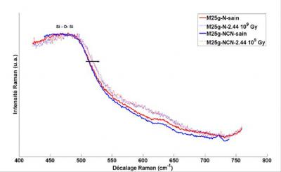 Study of CaMoO4 rich model ceramics for the containment of high activity nuclear waste