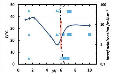 De nouvelles molécules pour stabiliser des émulsions multiples