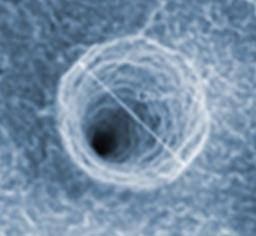 Rôle des défauts structuraux sur la magnétorésistance de nanoconstrictions magnétique