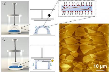Nouveau procédé d'élaboration à grande échelle de films d'oxyde de graphène réduit