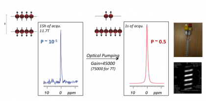 Projet ANR Max4us: Miniaturization And hyperpolarized Xenon NMR for Ultrahigh Sensitivity