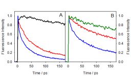 L'interaction médicament-protéine étudié par spectroscopie de fluorescence résolue en temps