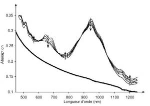 Brevet : Procédé et kit de séparation de nanotubes de carbone métalliques et semi-conducteurs. Method and kit for separating metal and semiconductor carbon nanotubes
