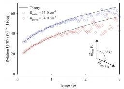 Visualisation des mouvements moléculaires dans l''eau liquide.