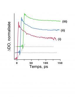 Utilisation de la phase dans des expériences d'absorption pompe – sonde