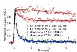 L'Etude par spectroscopie de fluorescence femtoseconde du mécanisme de photoprotection de l'eumélanine