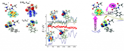 Dynamique électronique de biomolécules : vers une modélisation des mécanismes de désactivation des états excités