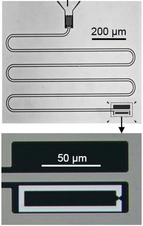 Manipulation coh�rente d��tats d�Andreev dans un contact atomique supraconducteur