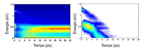 Modélisation de la dissipation d\'énergie dans un système hôte-invité électroniquement excité