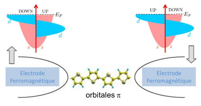 Des fils moléculaires non-magnétiques comme filtres à spins