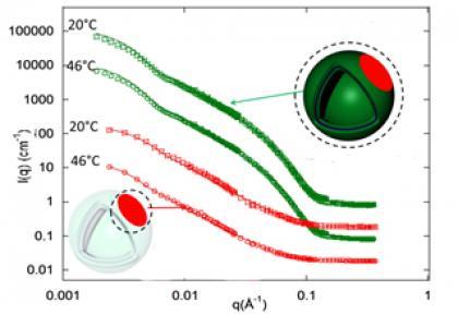 Structure de nano-vésicules hybrides lipides-polymères