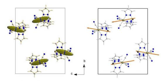 Vers la maîtrise de l'anisotropie magnétique des matériaux moléculaires