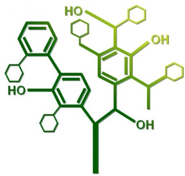 Transformation de la biomasse : dépolymérisation de la lignine / Biomass conversion: lignin depolymerization