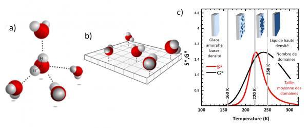 Transition de percolation de l\'eau confinée à deux dimensions