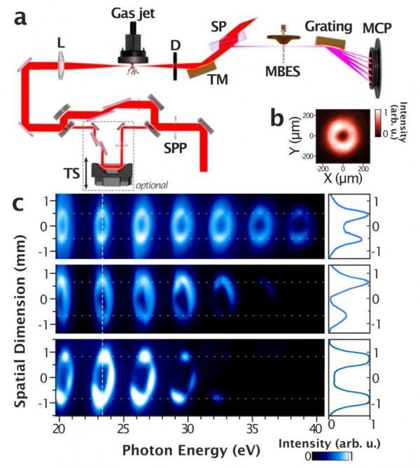 Des impulsions lasers harmoniques XUV attosecondes porteuses d\'un moment angulaire orbital : la visseuse-dévisseuse laser !