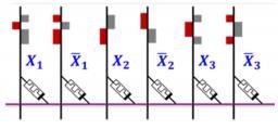 Des memristors organiques pour les réseaux de neurones