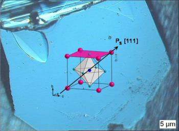 Multiferroic Oxides