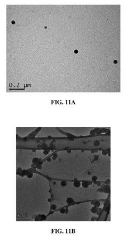 Brevet ; Matériaux moléculaires émissifs photoréticulables