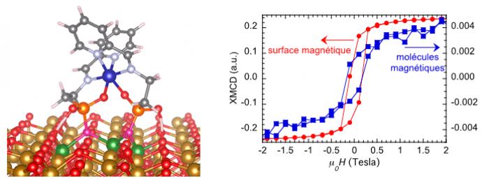 Bistabilité magnétique de molécules individuelles sur surface ferrimagnétique
