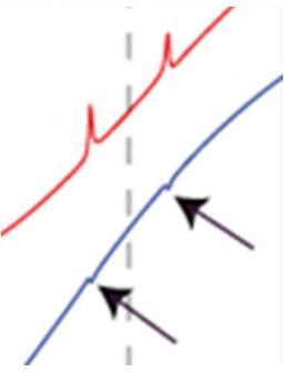 Spectroscopie RMN de bruit de spin : un modèle analytique complet pour une sensibilité inégalée