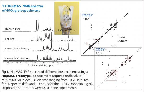 NMR towards metabolomics