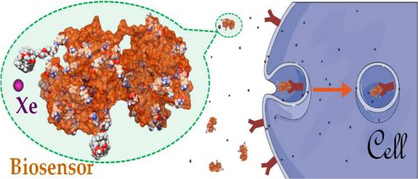 129Xe NMR-based biosensors @ LSDRM
