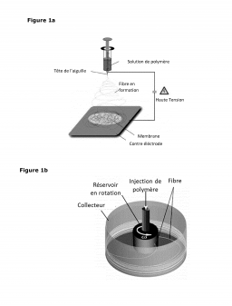 Brevet : Nanofibres gonflables et insolubles et leur utilisation dans le traitement des effluents essentiellement aqueux