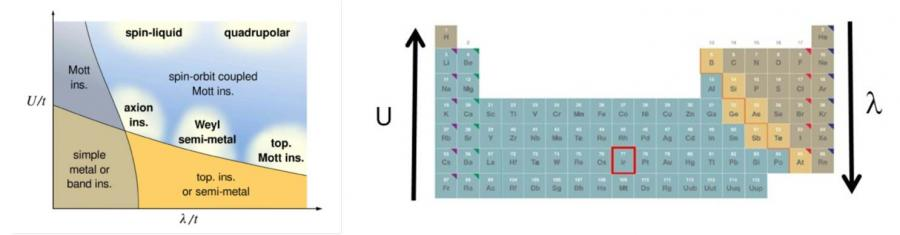 Similarité des propriétés structurales et magnétiques de composés iridates et de supraconducteurs haut Tc à base de cuivre