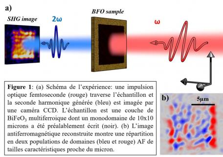 Technique d'imagerie SHG-laser femtoseconde pour observer un ordre magnétique très discret