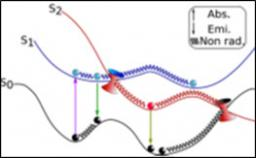 ANR ESBODYR Excited States of BiO-relevant systems: towards ultrafast DYnamics with conformational Resolution