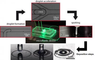 Améliorer la sensibilité d'analyse d'échantillons biologiques, avec la microfluidique