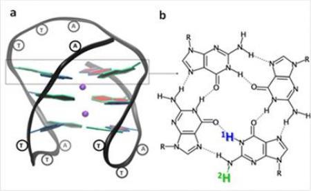 Identification d'un nouveau mécanisme d'endommagement de l'ADN de nos cellules par du rayonnement UV de basse énergie