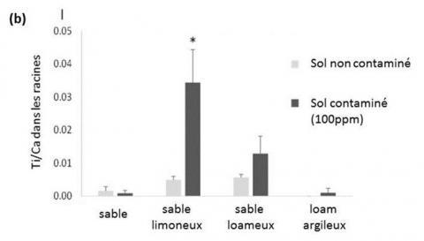 Suivi des  nanoparticules de TiO2 dans les végétaux, en fonction de la nature du sol