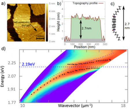 Strong coupling between self-assembled molecules and surface plasmons
