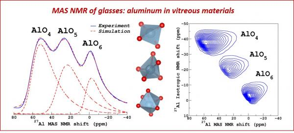 Solid State NMR studies of Glasses