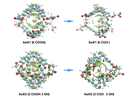 Computational approaches of xenon encapsulated in functionalized host systems