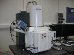 Microscopies électroniques au LEDNA