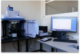 Spectroscopie / spectrométrie infra-rouge et Raman (LEDNA)