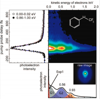 Relaxation dynamics of isolated open-shell molecules