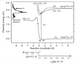 Relaxation dynamics of organometallic complexes