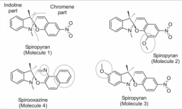 Relaxation dynamics of photochromic molecules
