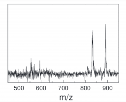 Spectroscopy and Photoinduced reactivity of isolated molecules