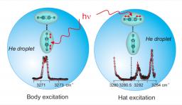 van-der-Waals Complex in Helium Droplets