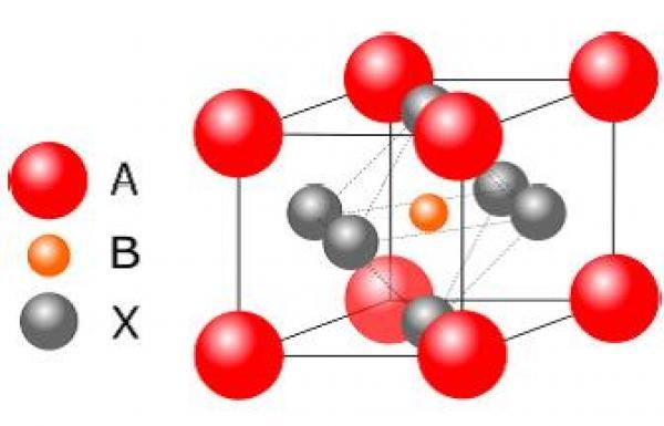 Étude par diffusion de neutrons des propriétés élastiques des pérovskites hybrides halogénées